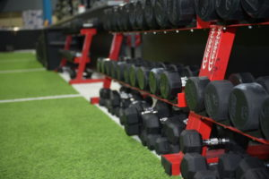 PFR performance dumbbells For weight training